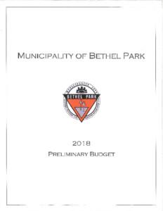 Icon of 2018 Preliminary Budget