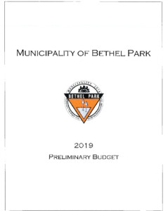 Icon of 2019 Preliminary Budget