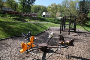 birch-tree-playground (1)