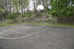elm-tree-basketball