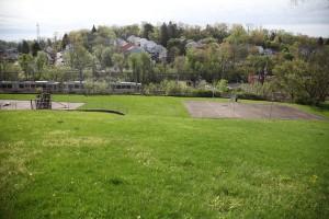 molly-hill-basketball