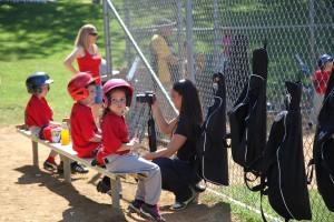 oak-tree-baseball