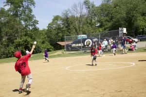 oak-tree-baseball2