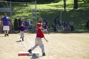 oak-tree-baseball3