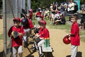 oak-tree-baseball4