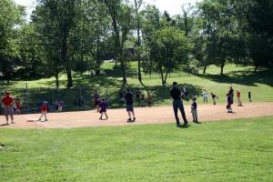 oak-tree-baseball5