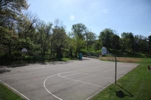 oak-tree-basketball (2)