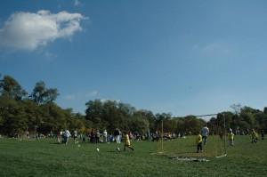 Village Green Field